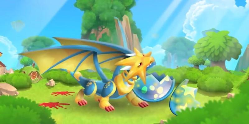 dragon city your dragon grow up